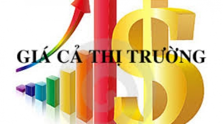 Tình hình giá cả thị trường, đánh giá công tác quản lý...